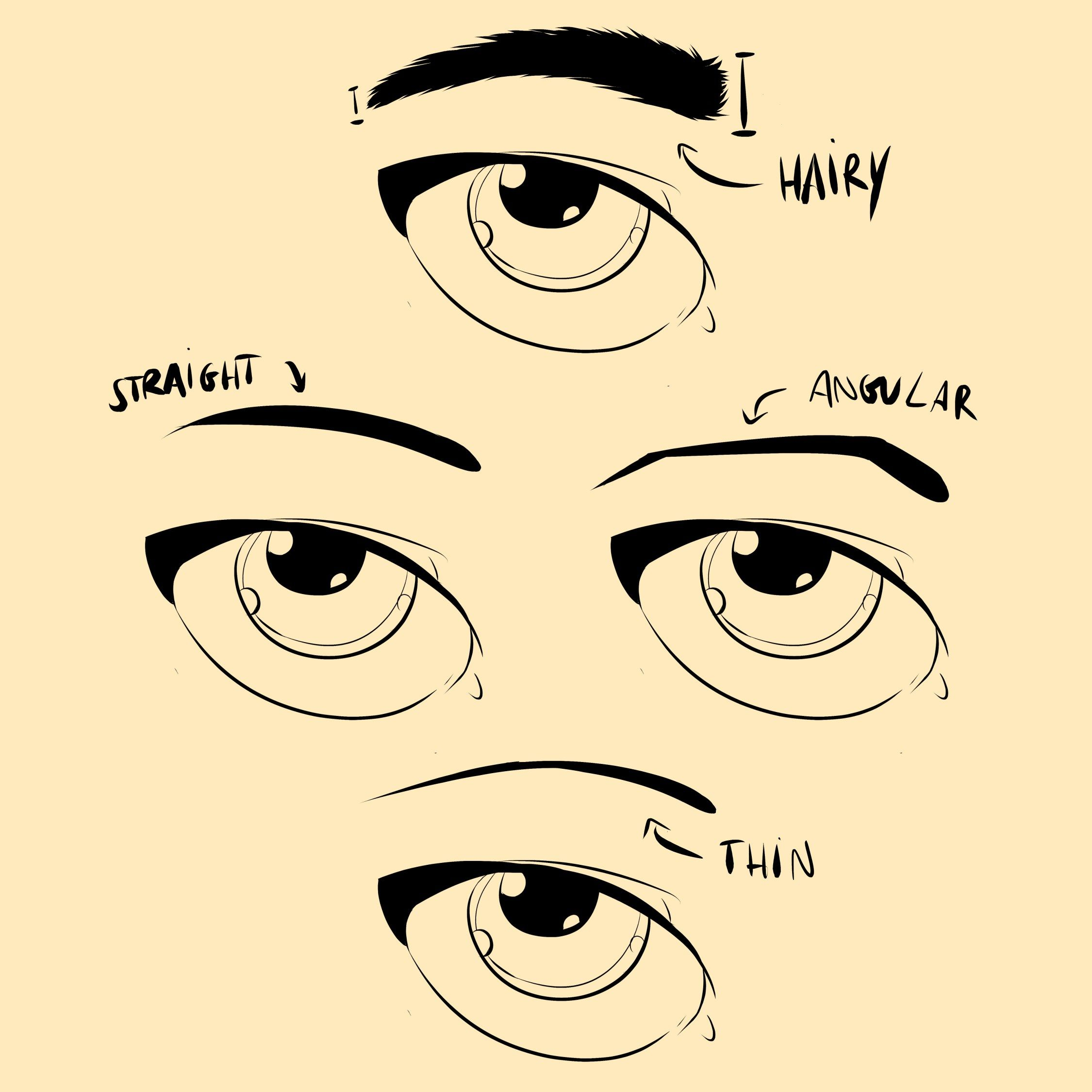 How to Draw Eyebrows - Eyebrow Shapes | Face drawing ...