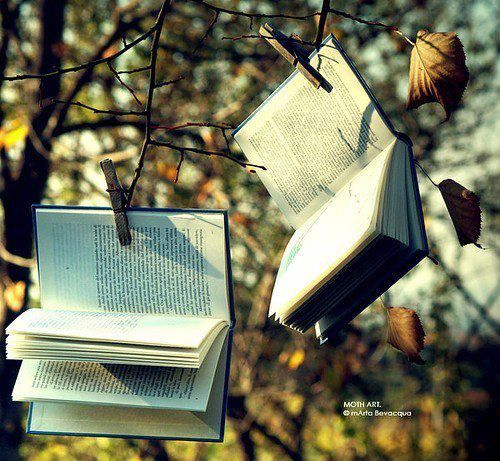 Libri, come frutti da raccogliere!