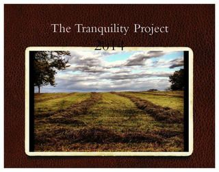 Tranquility Project — 2014 Calendar. Stopping each day to appreciate what's around us. All photos by me, with my iPhone and Instagram. #tranquilityproject http://www.lulu.com/shop/elissa-bass/2014-calendar-tranquility/calendar/product-21243411.html