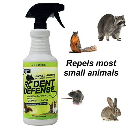 Rodent Defense Small Animal All Natural Deterrent And Repellent