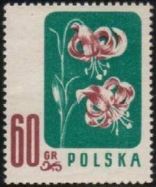 Znaczek Turk S Cap Polska Kwiaty Pod Ochrona Mi Pl 1024 Sn Pl 781 Yt Pl 908 Pol Pl 876 Flower Stamp Stamp Postage Stamps