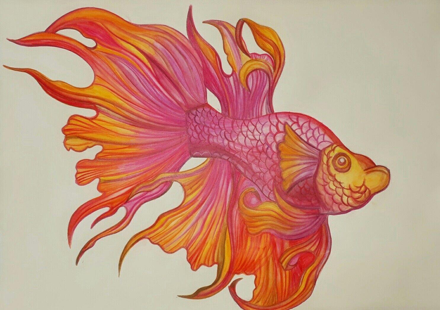 One stroke watercolour design . purple Betta fish   watercolour arts ...