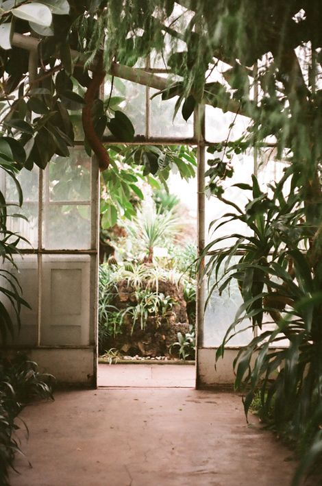 Glass House Reminds Me Of The Botanical Gardens Back Home Doorways To Your Imagination