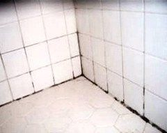 Best Way to Remove Mold and Mildew from Tile Grout Bathrooms and