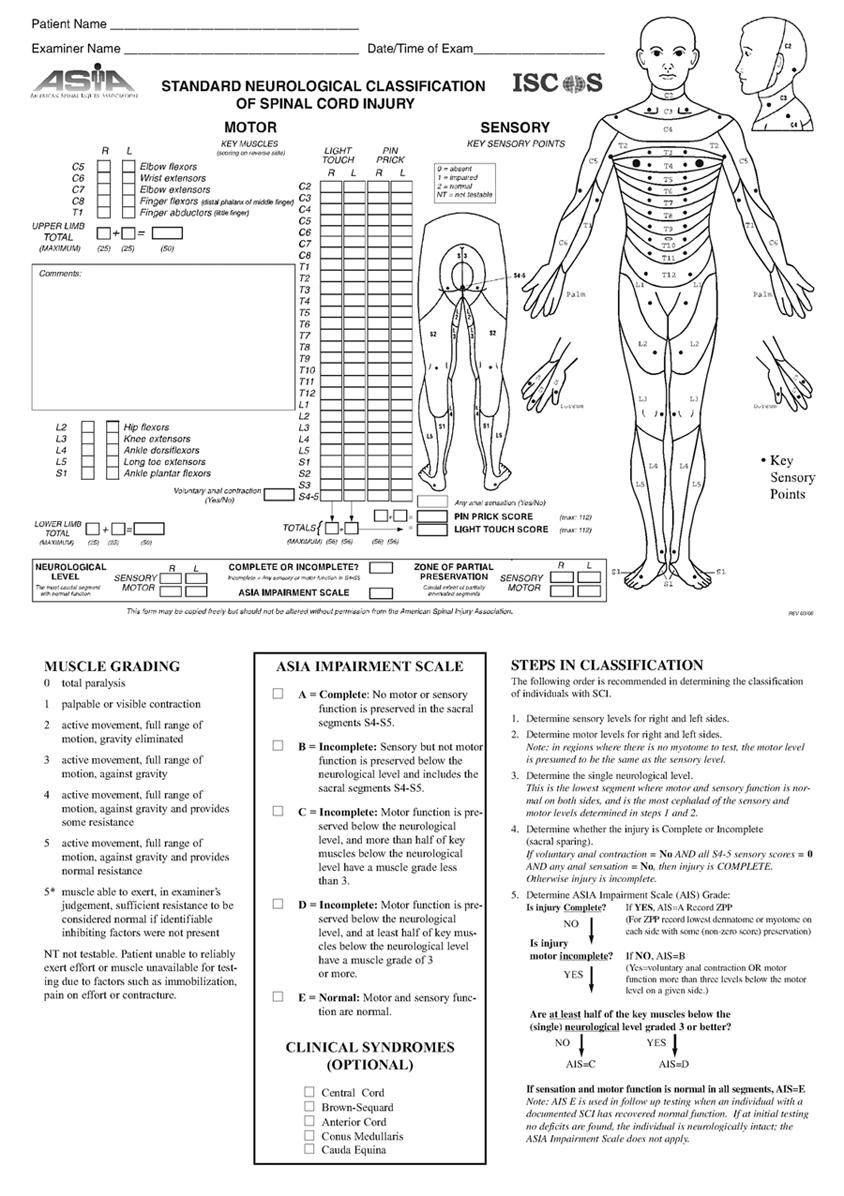 Spinal Cord Injuries Practice Essentials Background Anatomy