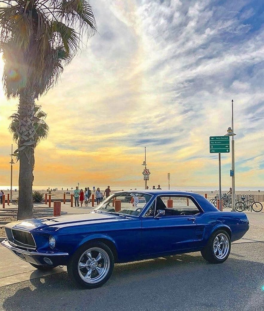 From Classicmustangz Sent In By Jacksonlipps California