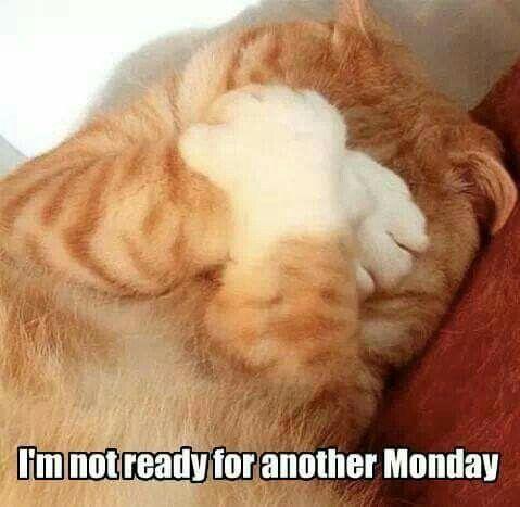 #monday