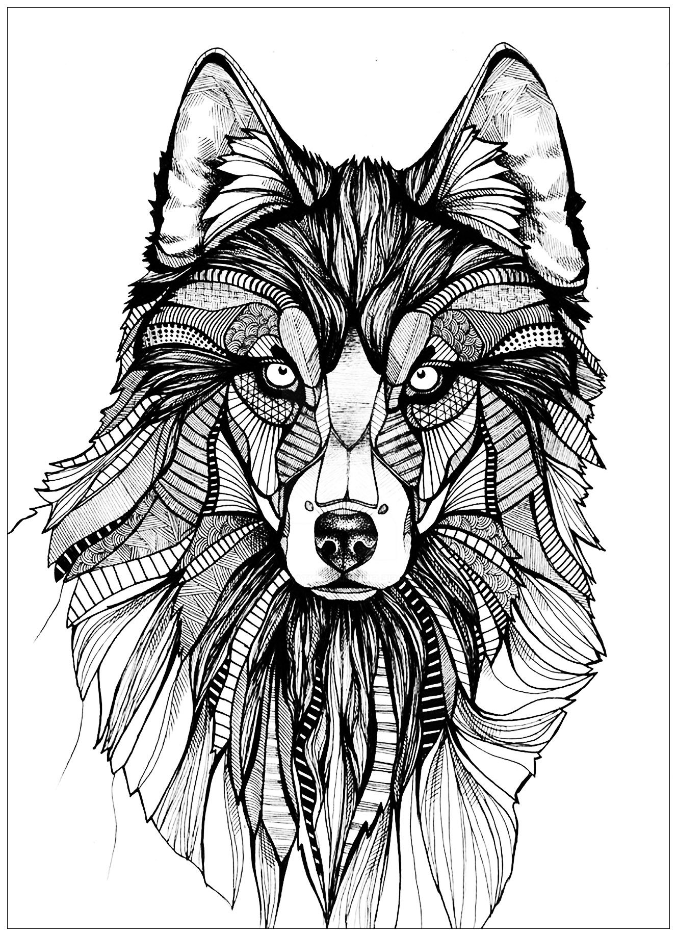Wolf Coloring Pages For Adults Wolf Colors Mandala Wolf Wolf
