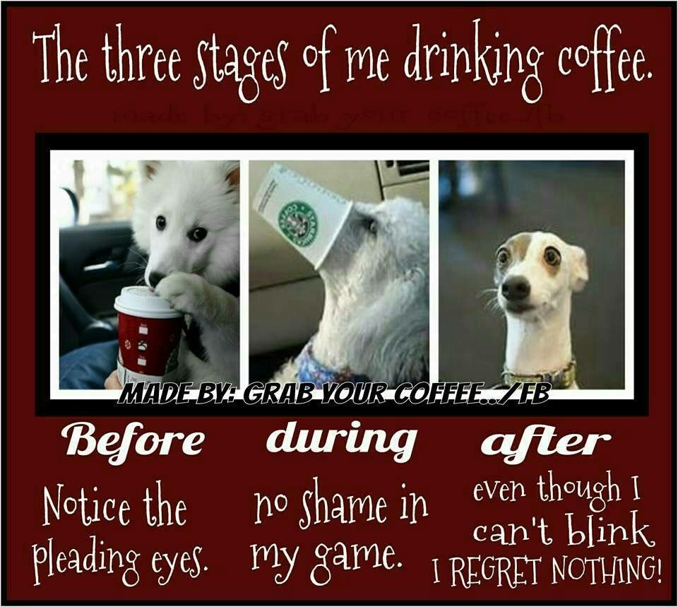 3 stages of me driving coffee i drink coffee coffee