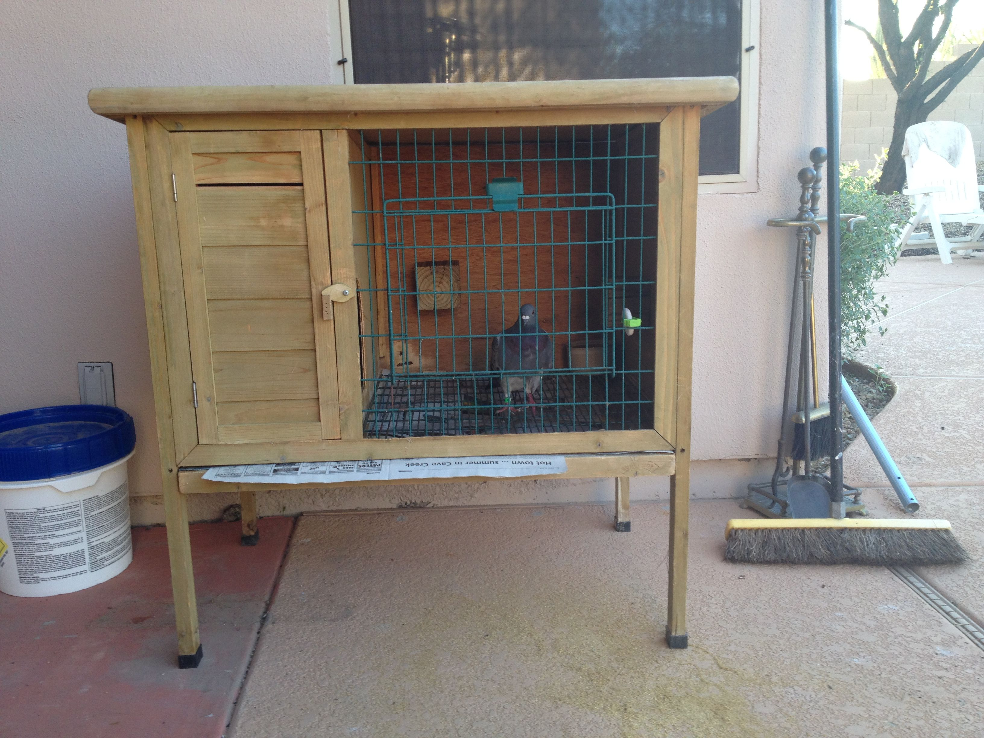 Pin by Ivana Gasparac on Pigeons aviary chicken coop