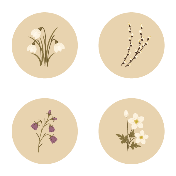 How to Create Spring Flowers From Basic Shapes in Adobe Illustrator