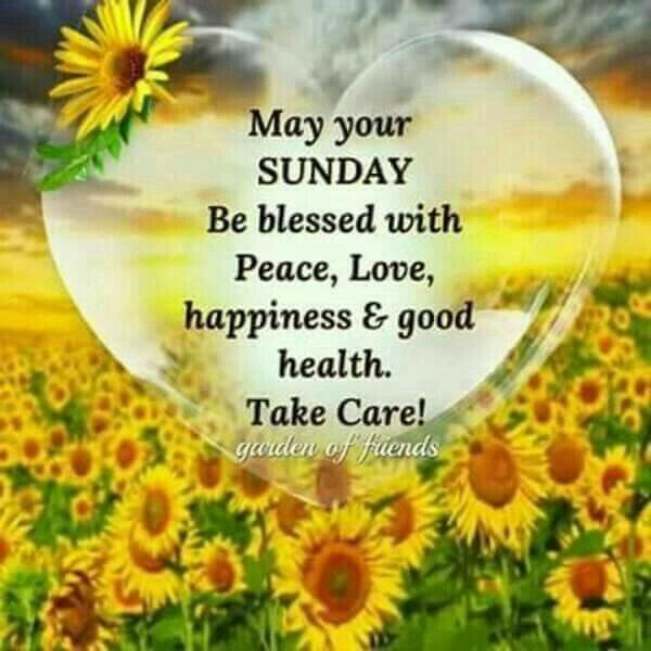 Good Morning Sunday Blessings Images And Quotes