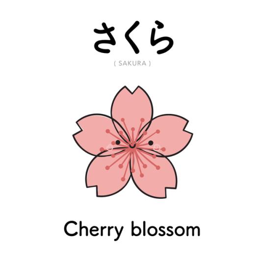 [336] さくら | sakura | cherry blossom