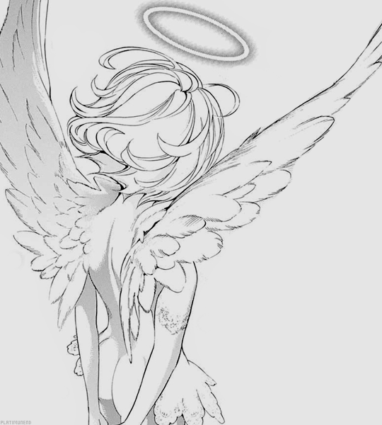 Romance Animes Art Sketches Wings Drawing Drawing Poses
