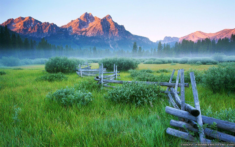 Rail Fence Spring Mountain Meadow