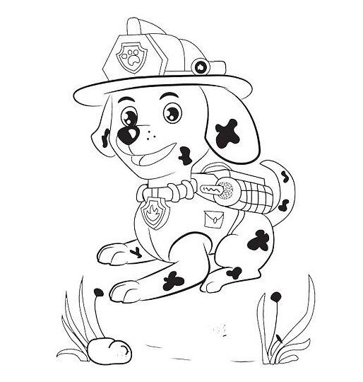 Cagnolino marshall paw patrol disegni da colorare gratis for Disegni di paw patrol