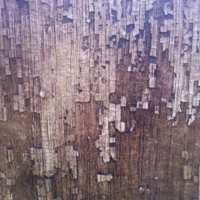 Titled: Wood Skin  By; David Lusk