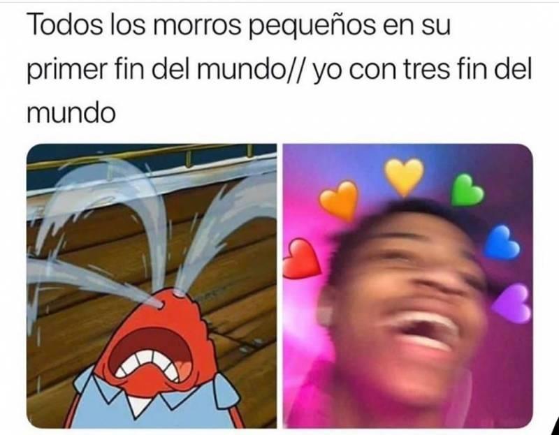 Las Cucarachas Somos Inmortales Memes Funny Memes Love Memes