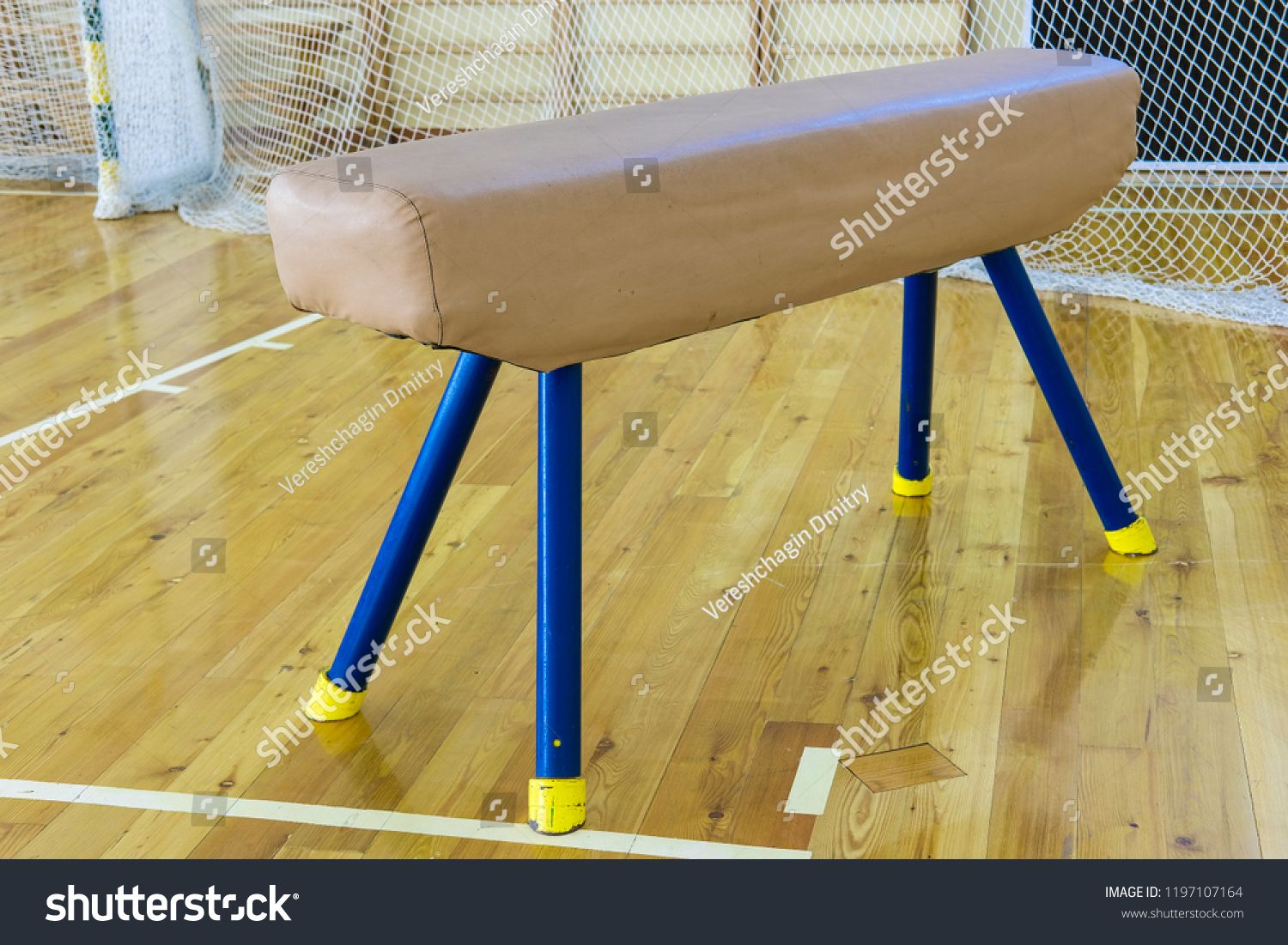 Moscow Russia September 23 2018 The Image Of Sport Buck In A School Sport Hall In Mosocw Ad Ad September M Sports Images Moscow Russia Stock Photos