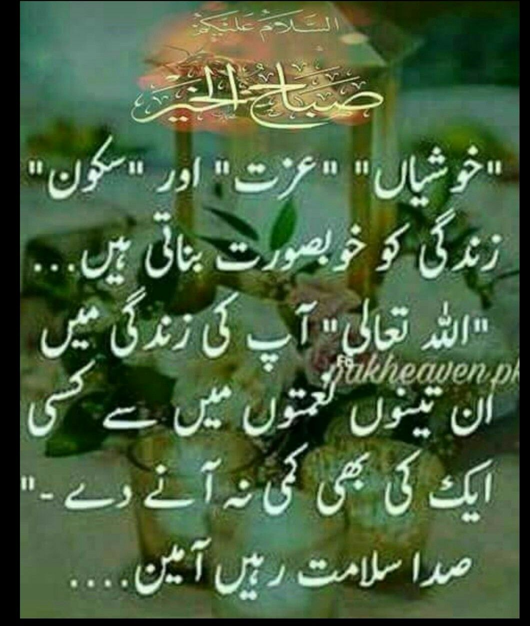 Maria Khan My Dua For My Followers Happy Birthday Dua Dua