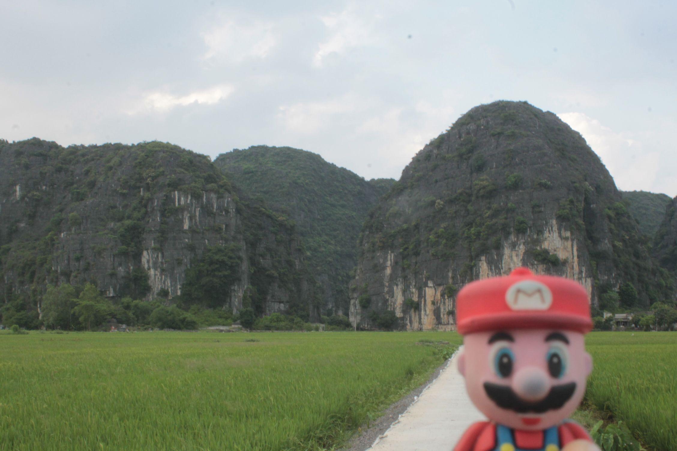 En los campos de arroz de Tam Coc