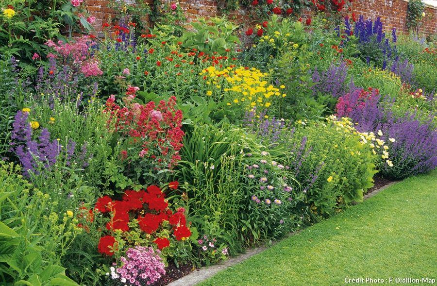 cr er un massif pour 3 fois rien avec des vivaces jardinerie vivace et massif. Black Bedroom Furniture Sets. Home Design Ideas