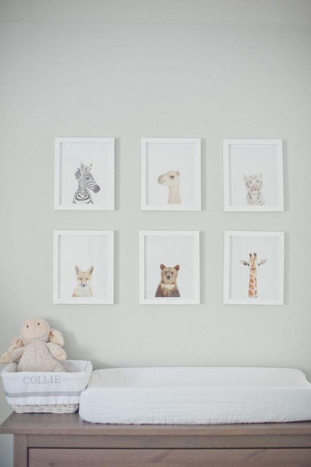 Animal prints | henry jax. | Pinterest | Cuadros decoracion, Bebé y ...