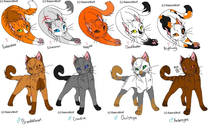 warrior cats Google Search Warrior cats, Furry design