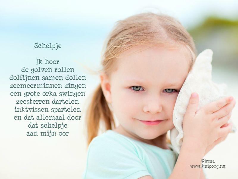 Schelpje_1