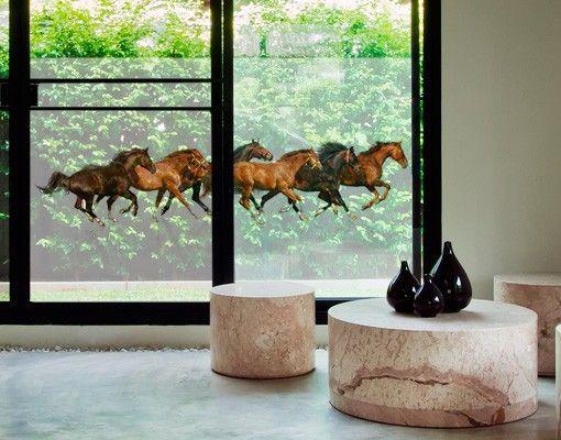 Badezimmerfenster sichtschutz ~ Fensterfolie sichtschutz fenster pferdeherde fensterbilder