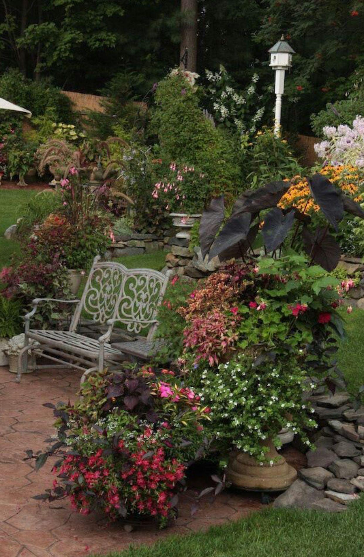Colourful garden   Garden   Pinterest   Gardens, Paths and Landscaping
