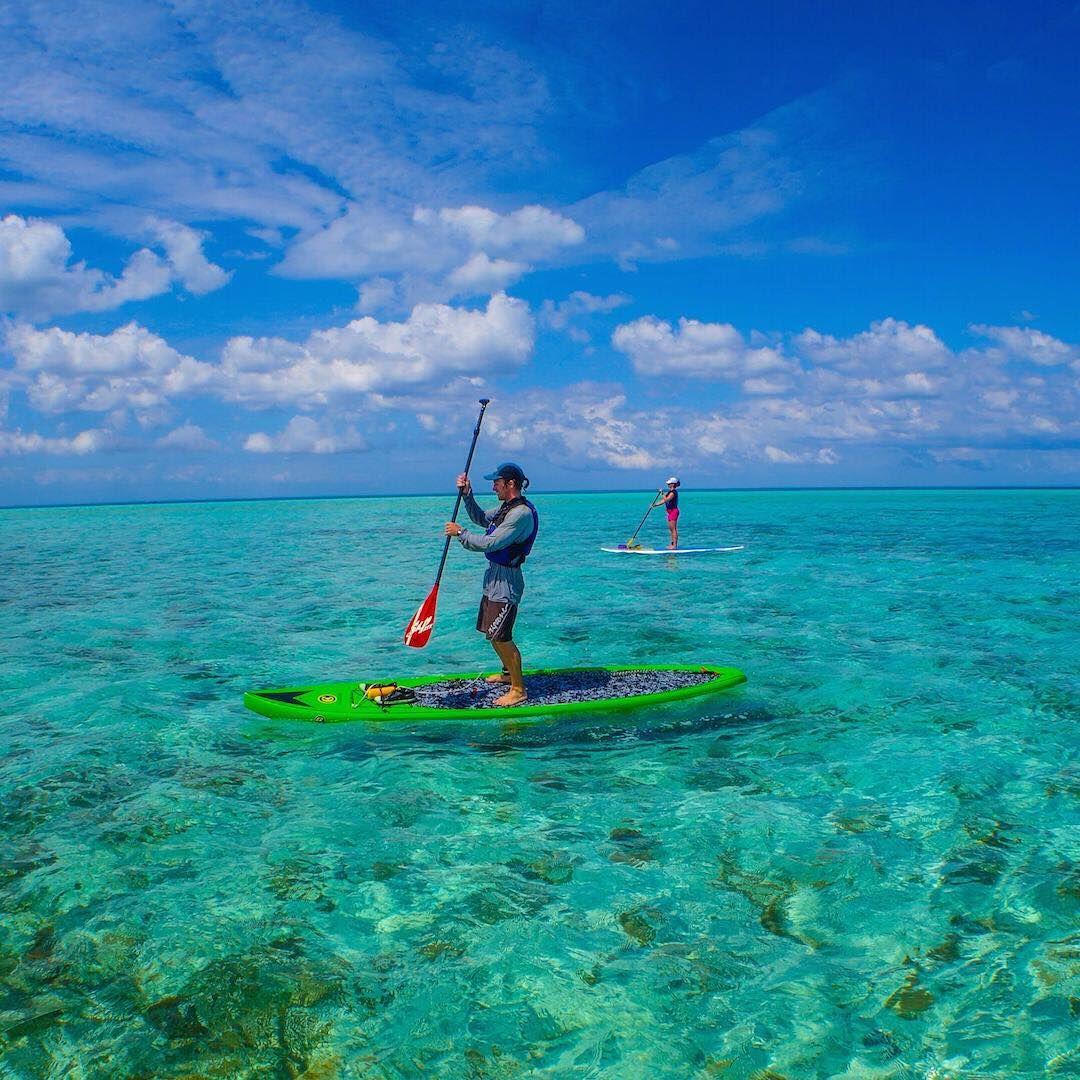 Exploring Glover's Reef by SUP #gloversreefatoll #belize #visitbelize #explorebelize #travelbelize #sup #paddling #paddleboarding #ocean #tropical  #adventure #vacaymode #paradise