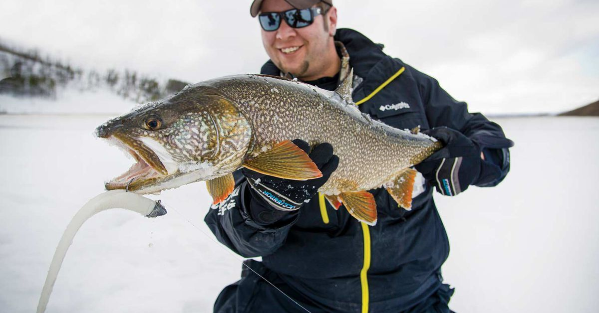 Use Big Baits to Catch Giant Lake Trout Through The Ice in
