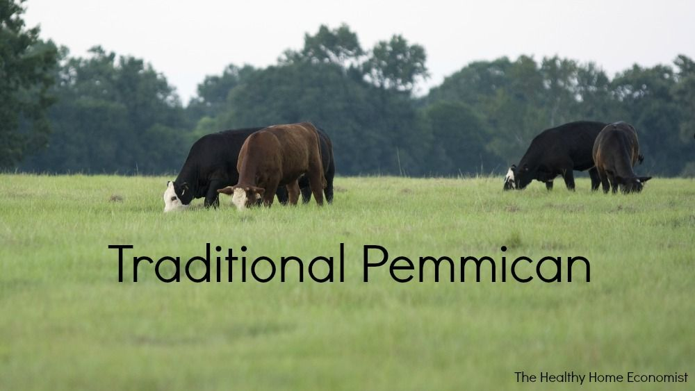 pemmican from grassfed cows Survival food, Food, Healthy
