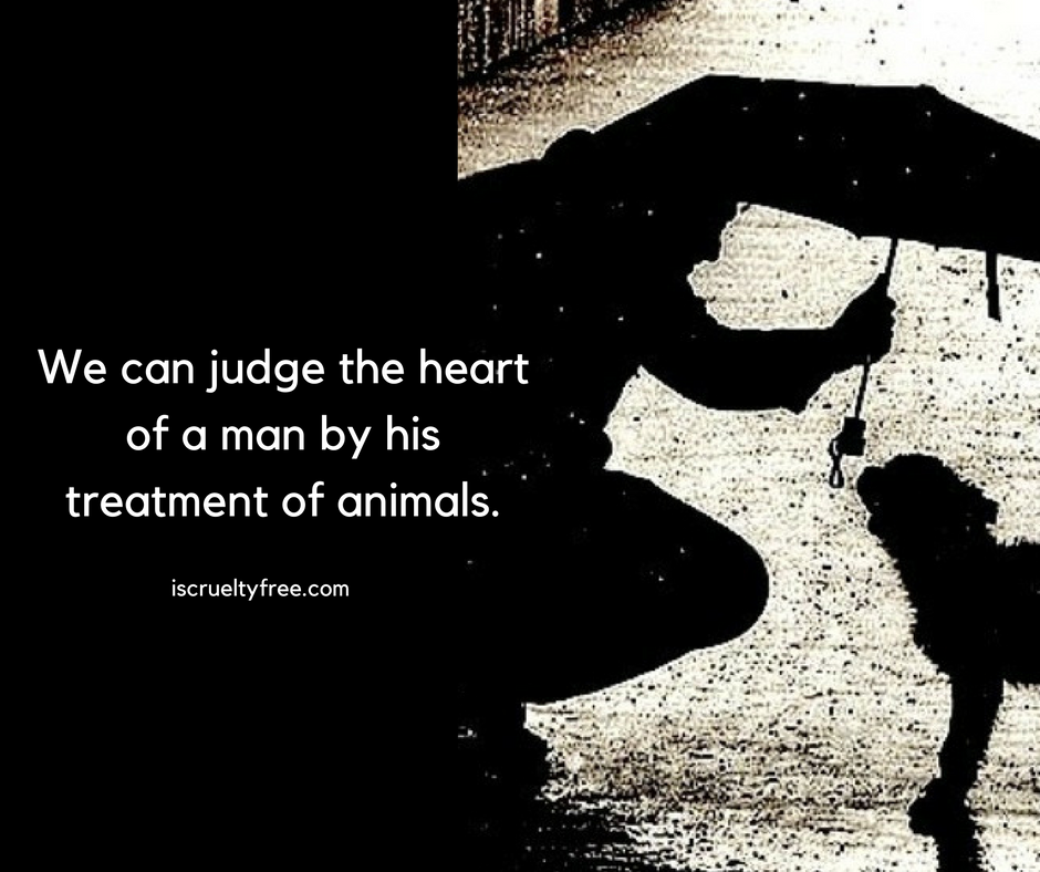 Take a pledge to stop animal cruelty. Love animals and have compassion in your heart. Animal equality | Cruelty free products | Peta |