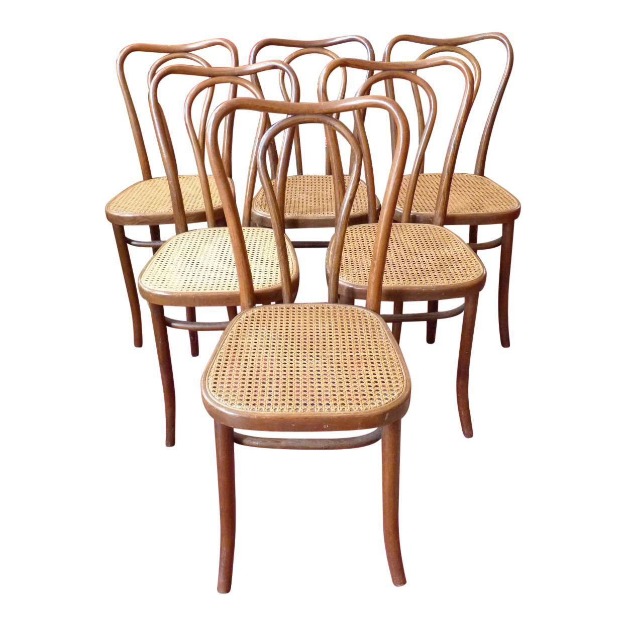 Vintage Bentwood And Cane Cafe Dining Chairs Set Of 6 Image 1