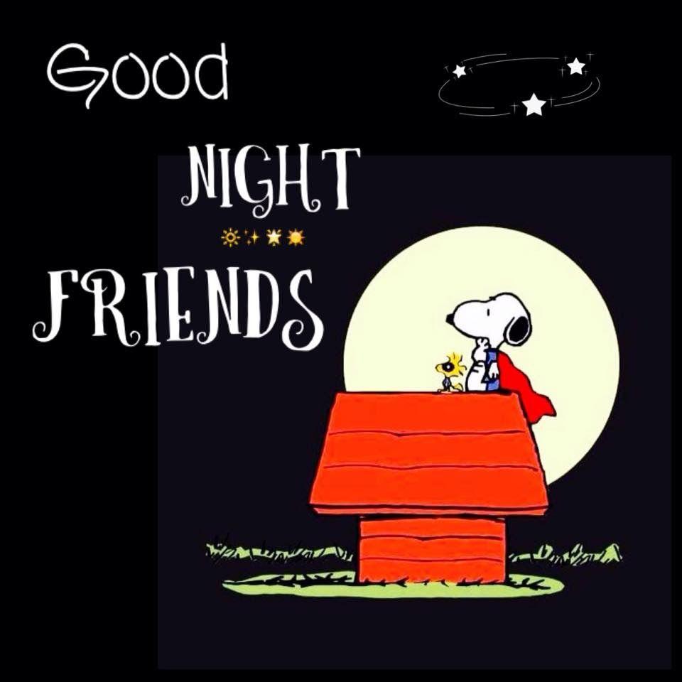 Buenas Noches Amigos Whatsapp 190 Good Night Quotes Funny Dating Memes Good Night