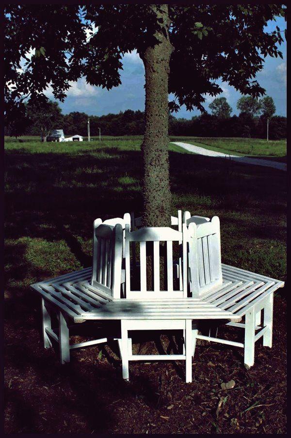 Photo of Kreative Ideen – Wie man mit alten Küchenstühlen eine Bank um einen Baum baut – Haustricks