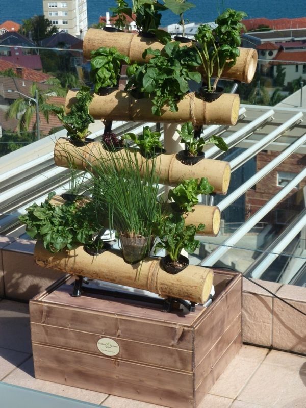 A decorative bamboo hydroponic plant growing system house