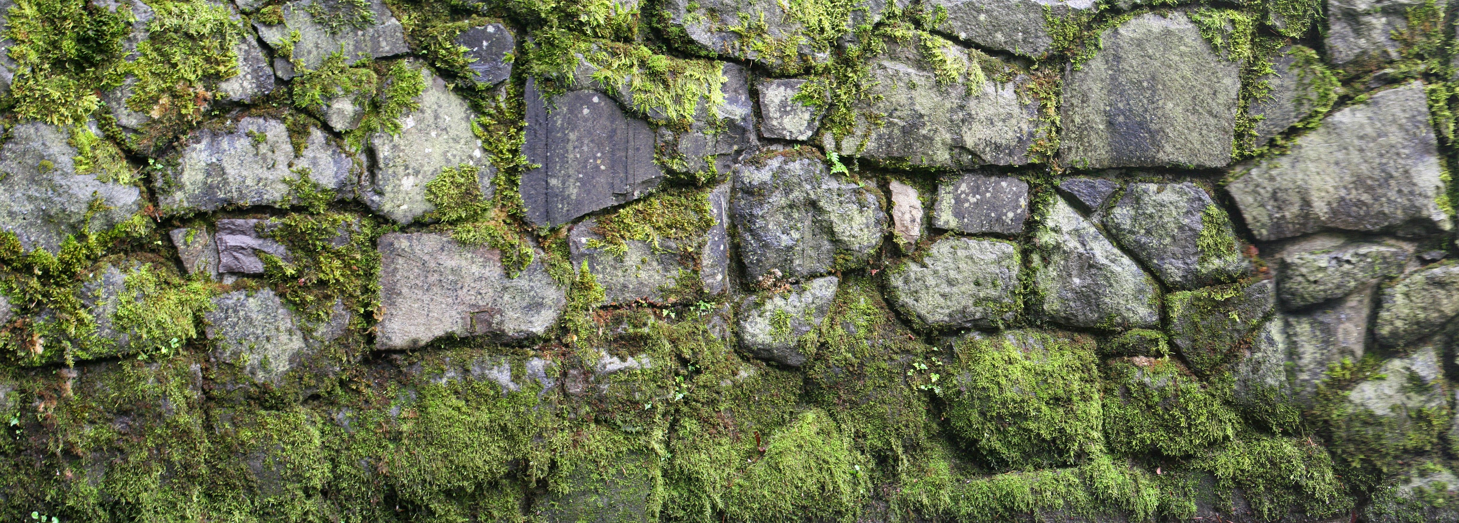 A natural rock wall with moss paint class pinterest a natural stone walls and stones - Flaunt your natural stone wall finishes ...