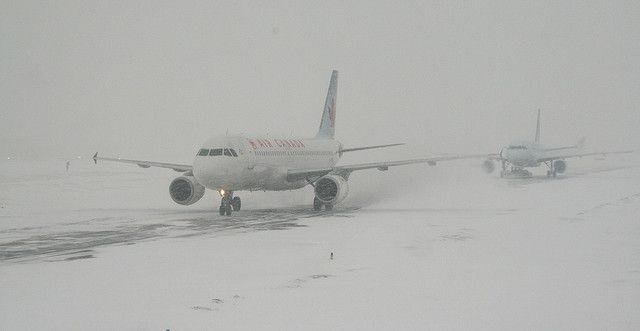 Airplanes Skidding In A Snow Storm Pet Travel Pet Shipping