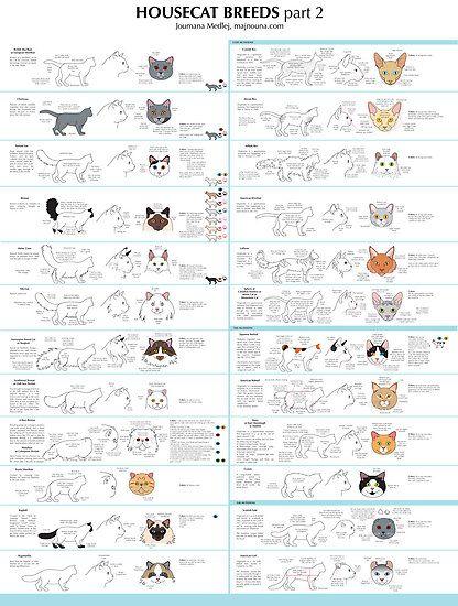 Mina Oli Handbags Still Available With Images Cat Breeds Chart