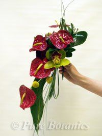 Red anthurium's pop against chartreuse cymbidium orchids and tropical leaves.