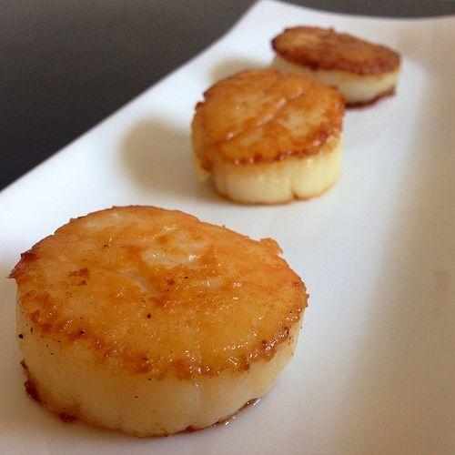thomas keller's caramelized scallops  caramelized