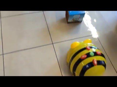 Tips om te werken met de Bee-bot - Juf Maike - website en leerkracht blog