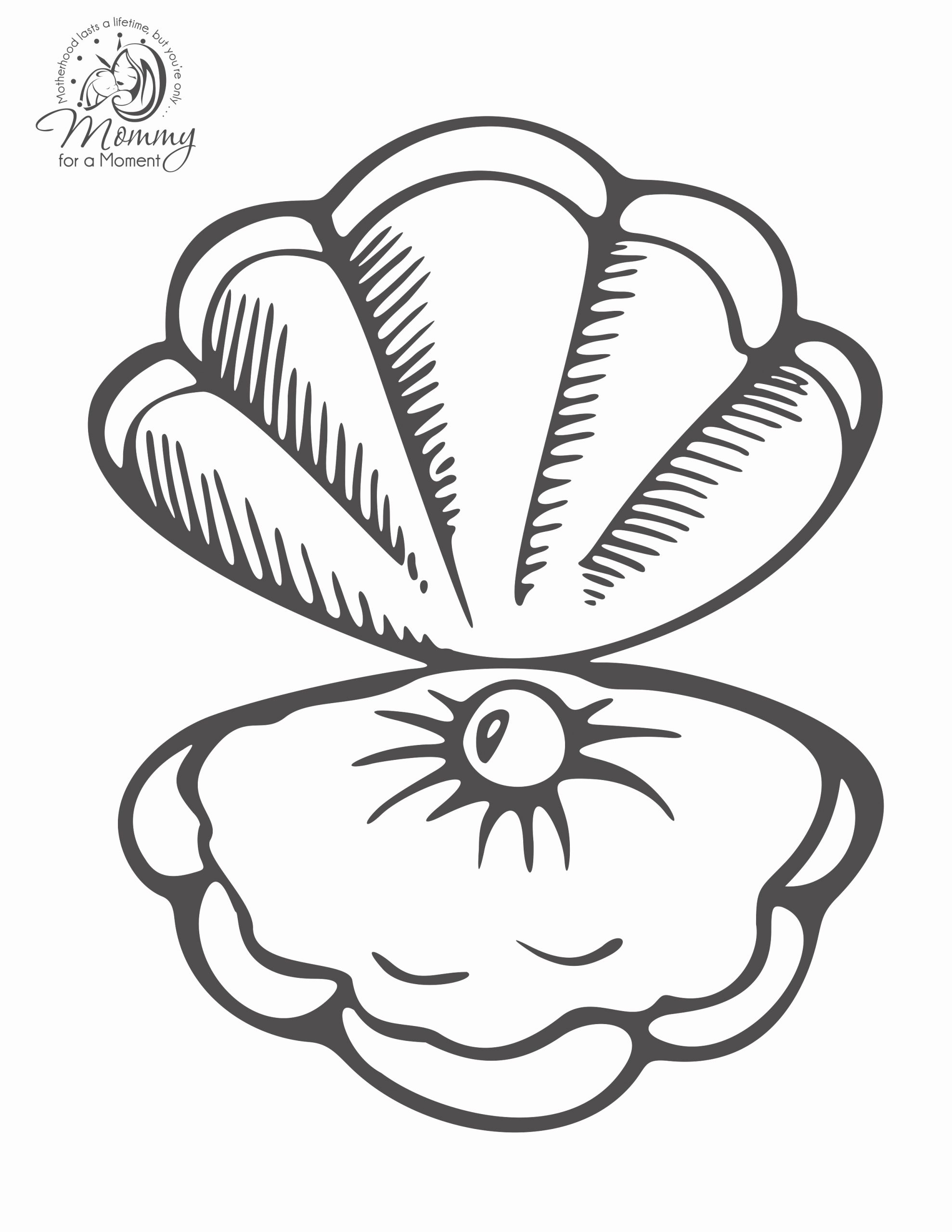 Sea Animal Coloring Page New Coloring Pages Phenomenal Seashell Coloring Page Image In 2020 Animal Coloring Pages Spring Coloring Pages Coloring Pages
