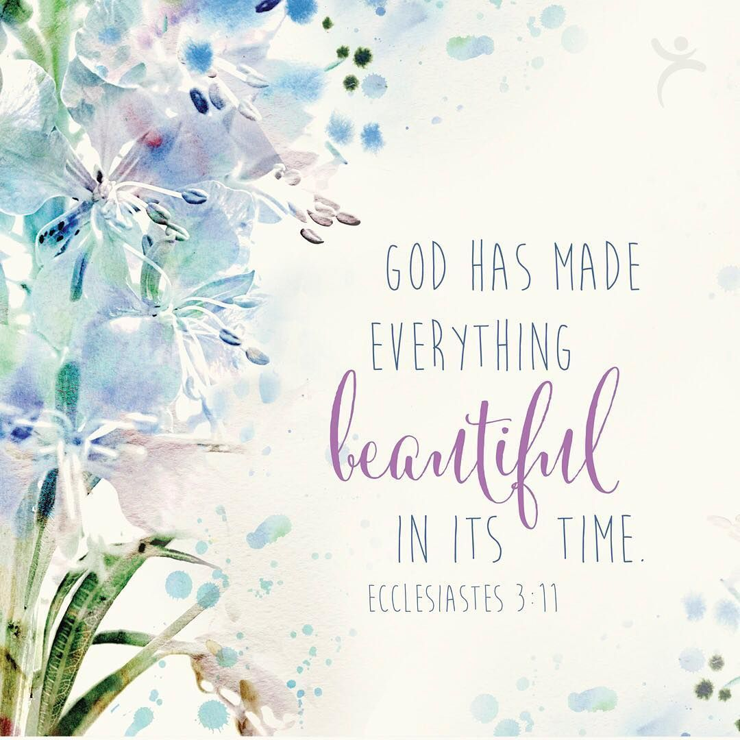 Image result for god has made everything beautiful in its time