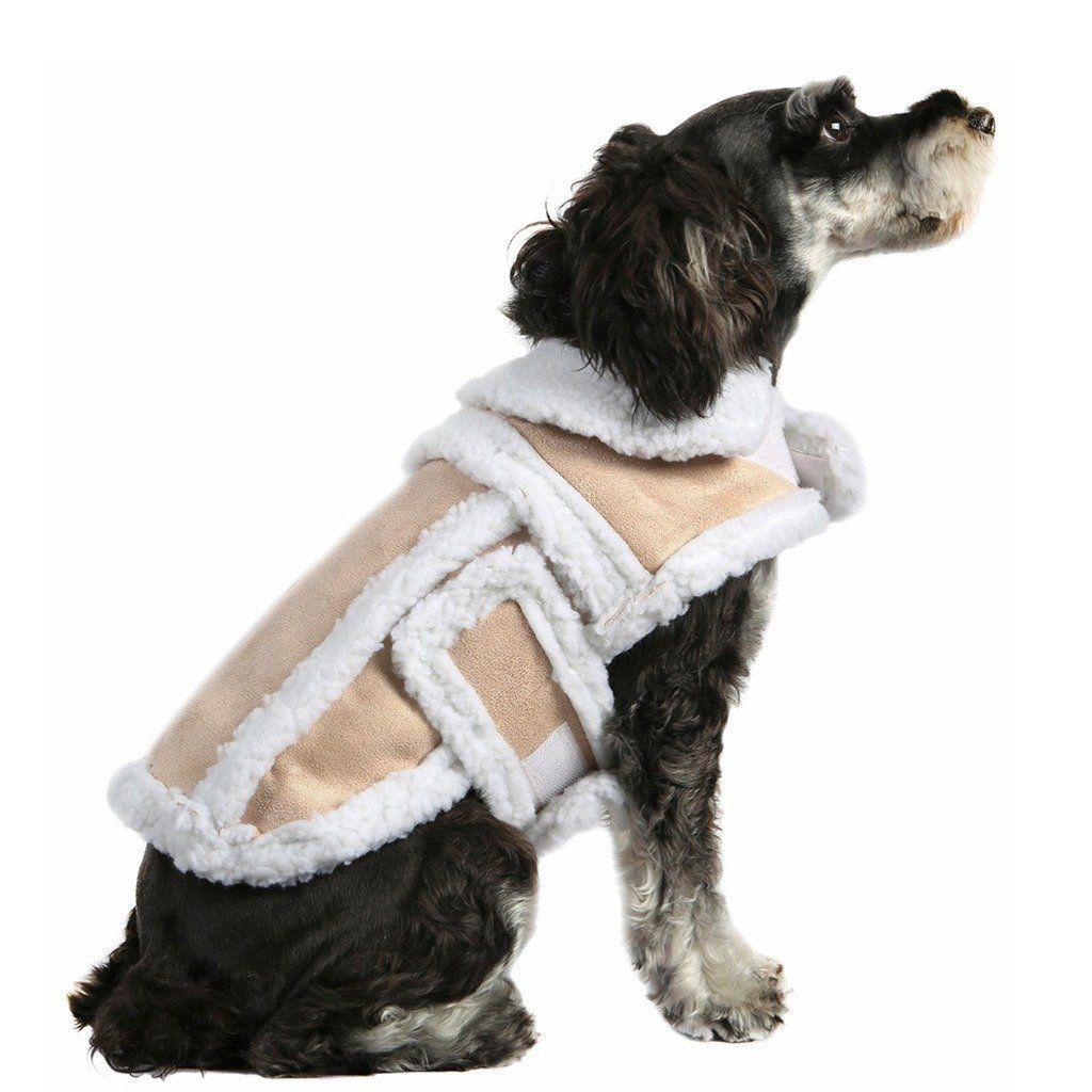 Visi vests dogs forex bonus free