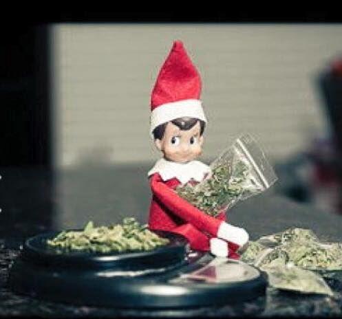 Elf on the Shelf Pot head elf | Elf on the Shelf | Pinterest ...