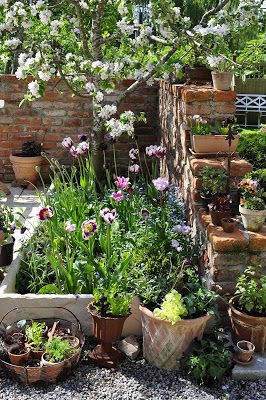 """""""I love the planting here, it looks every bit at home in a natural, wild looking bed that's not too modern. A perfect idea for a small courtyard garden. You could also tend it easily according to each season."""""""